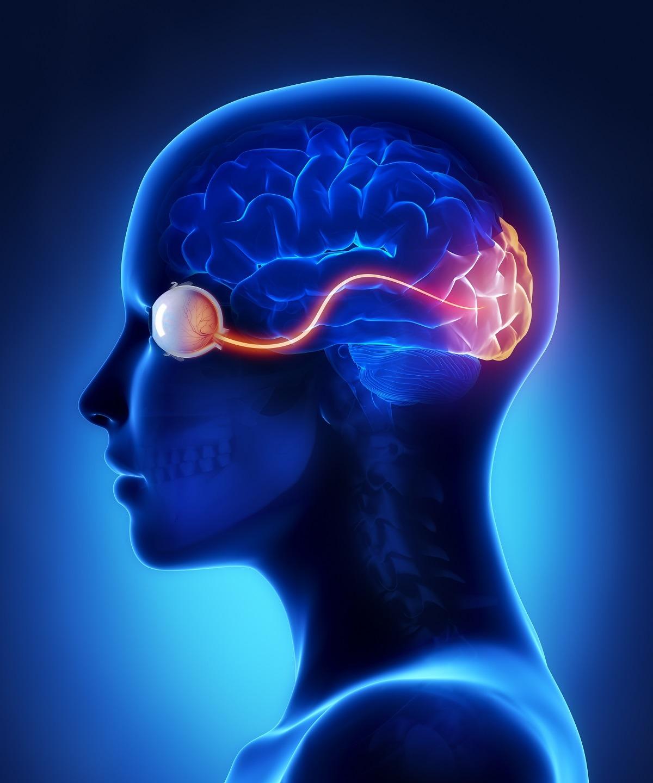 Lesioni del nervo ottico